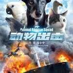 Animal Rescue Squad 2019