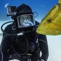 【GoPro HERO5 BLACK】ダイビング用アクセサリーが充実してきた!