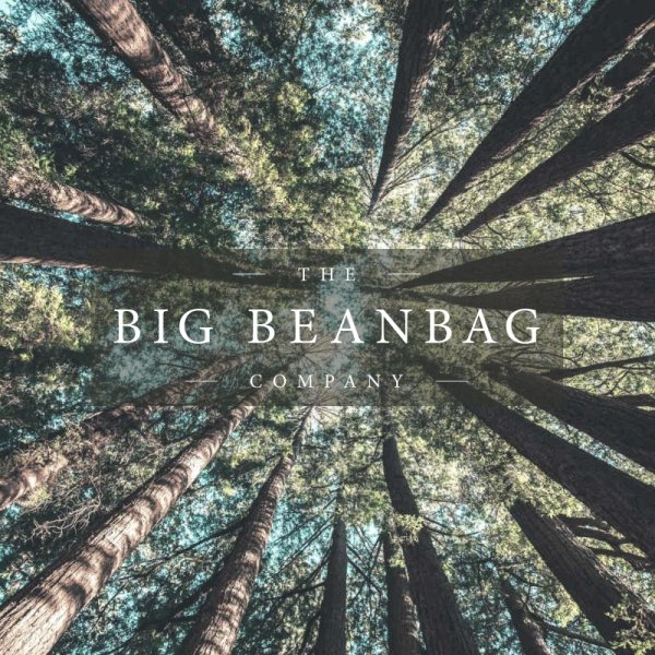 Fantastic Terms The Big Beanbag Company Handmade To Order In Cornwall Gmtry Best Dining Table And Chair Ideas Images Gmtryco