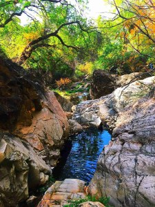 Hidden water sources and natural springs