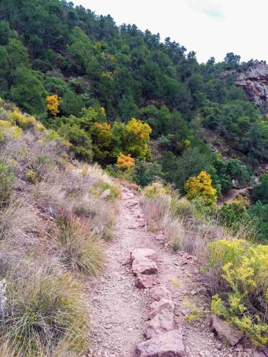 path along the lost mine trail