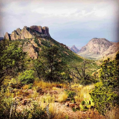 view into the chisos basin and the window trail