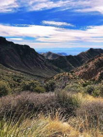 Laguna Meadows Trail overlooking Chisos Mountains