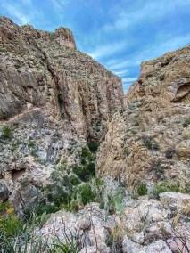 North fork Marufa Vega Trail in Big Bend National Park