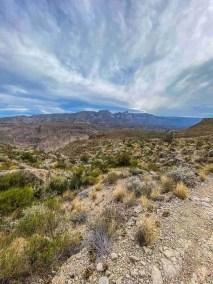 Marufa Vega Trail in Big Bend National Park