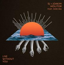 Live Without You (feat. SVRCINA) - Live Without You