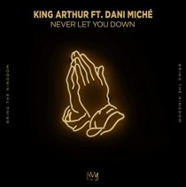Never Let You Down (feat. DANI MICHE) - Never Let You Down