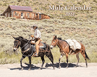 2022 Mischka Mule Calendar