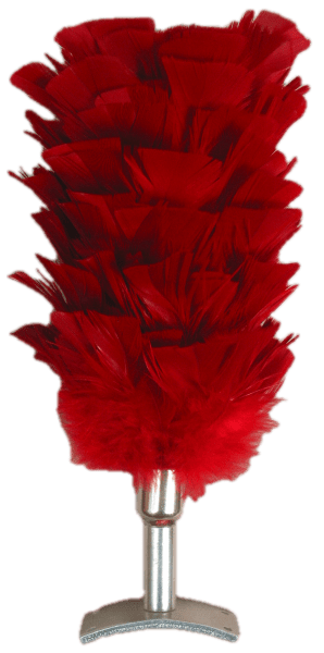 Feather Plume