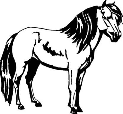 Black mini horse decal