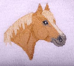 Belgian Horse Head