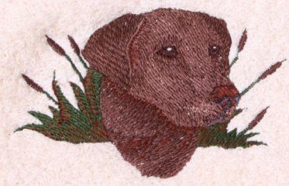 Chocolate Labrabdor Dog Design