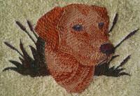 Golden Labrador Dog Design