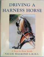 Driving a Harness Horse