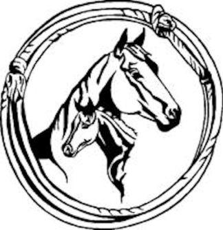 Equine Decals