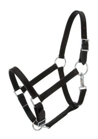 Horse Halters