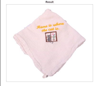 Home is where the cat towel