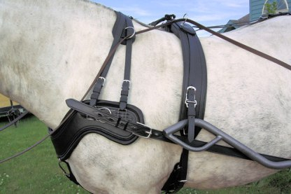 Comfy Fit Harness Breast Collar and saddle
