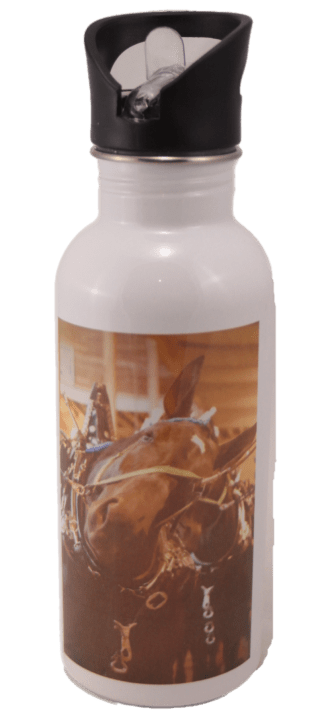 Percheron Horse Head Aluminum Water Bottle