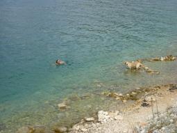 Lara schwimmt mal wieder