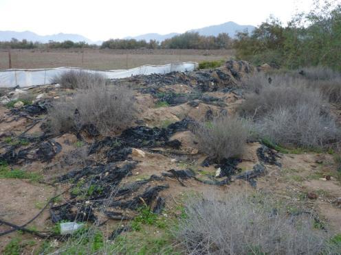 Reste von abgeräumten Treibhäusern