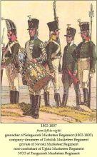 http://napolun.com/mirror/napoleonistyka.atspace.com/uniforms_Russian_army.htm
