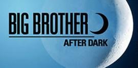 Big Brother After Dark