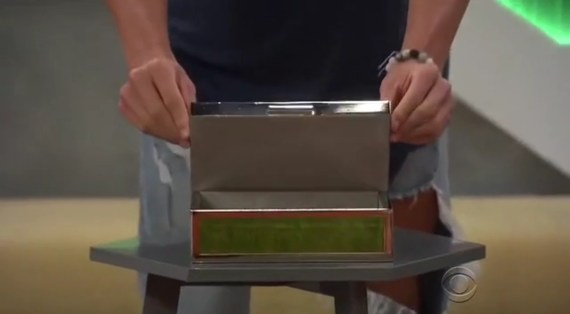 Big Brother Power of Veto Box