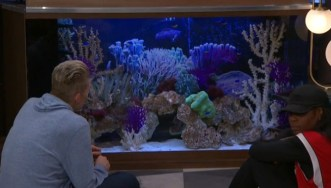 CBB-Live-Feeds-0616-Mark-Fish