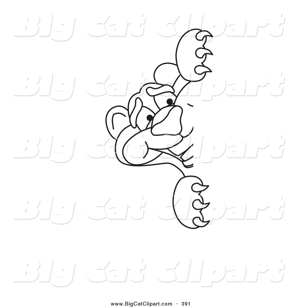 Big Panther Paw Coloring Page Coloring Pages