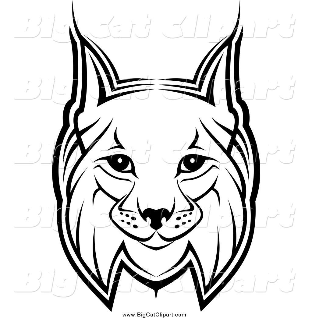 Big Cat Vector Clipart Of A Bobcat Face By Vector