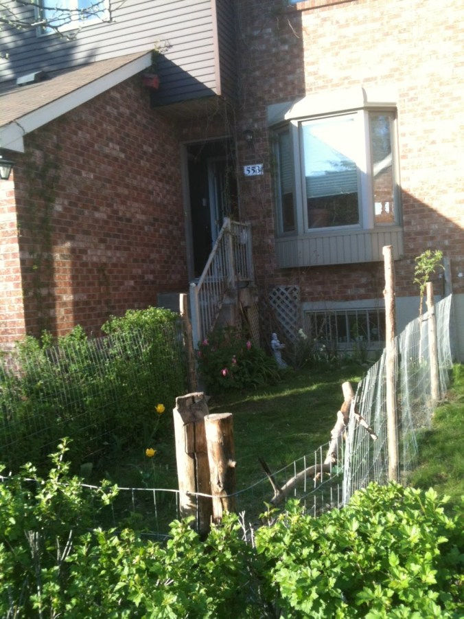 welded wire fence, facing the house