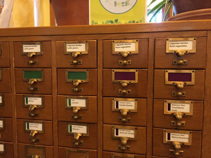 old library card catalogue used to categorize packets of seeds
