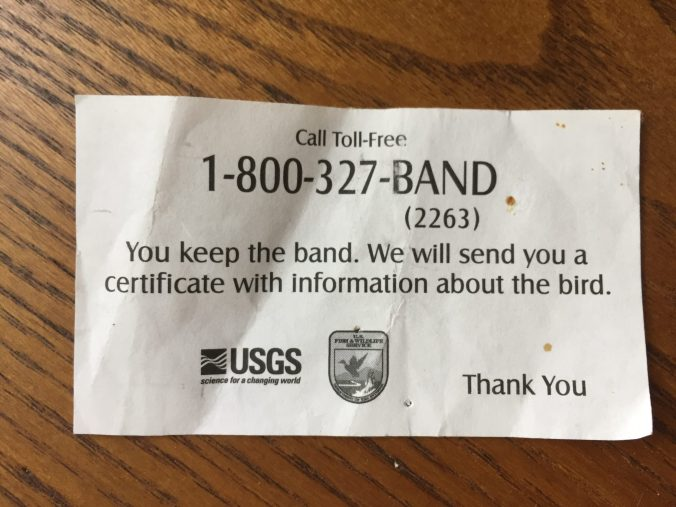 If you've found or hunted a bird with a band on its leg, call 1-800-327-BAND or report it to www.reportband.gov
