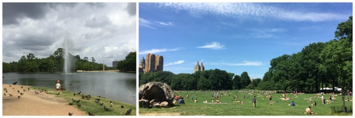 Hermann park Houston vs Central Park NYC