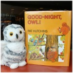 Good-night-owl-predictable-book