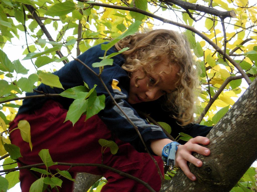 Jesse climbing