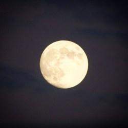 super blue blood moon insights
