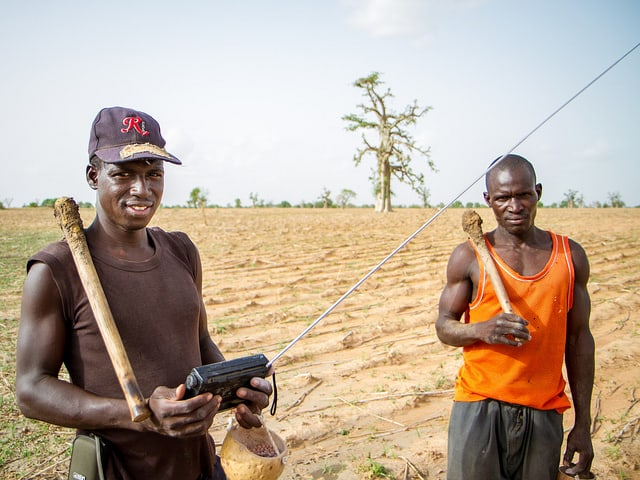 Consuming information: Agriculture at the crossroads of sustainability