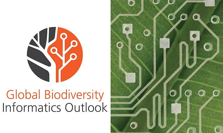 The Global Biodiversity Informatics Outlook: delivering biodiversity knowledge in the information age