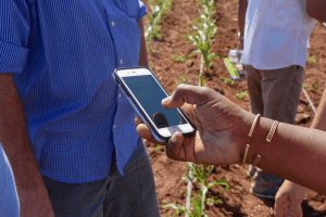 Seeing really is believing: farmers' photos revolutionize insurance and advisory services