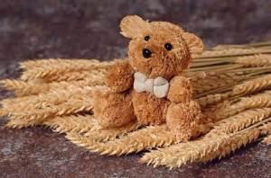 (Duncan the ) Straw (bear)