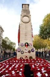 cenotaph-2010-crown-copyright