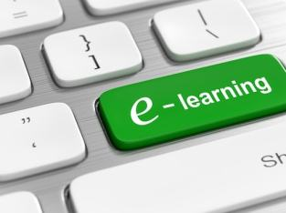 ORGANISATIONAL E-LEARNING COURSES AND SYSTEMS