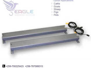150kg industrial Platform Scales platform weighing scale