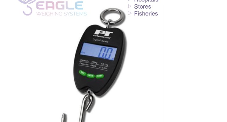 Portable Fish Hanging and Luggage Scales