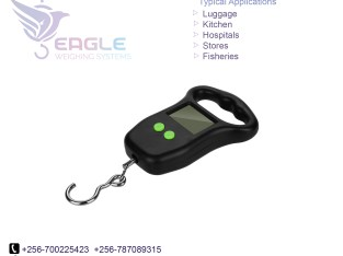 High Accuracy Bathroom weighing scales