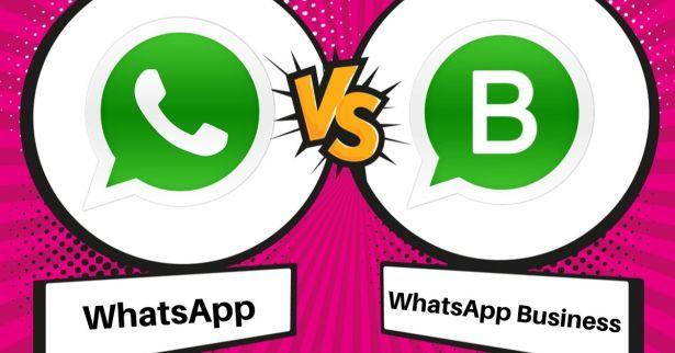 Whatsapp Vs Whatsapp Business App What S The Difference Bigdomain My Malaysia Domain Seo