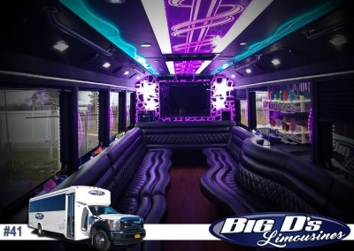 26 Passenger550 Party BusLimo #41