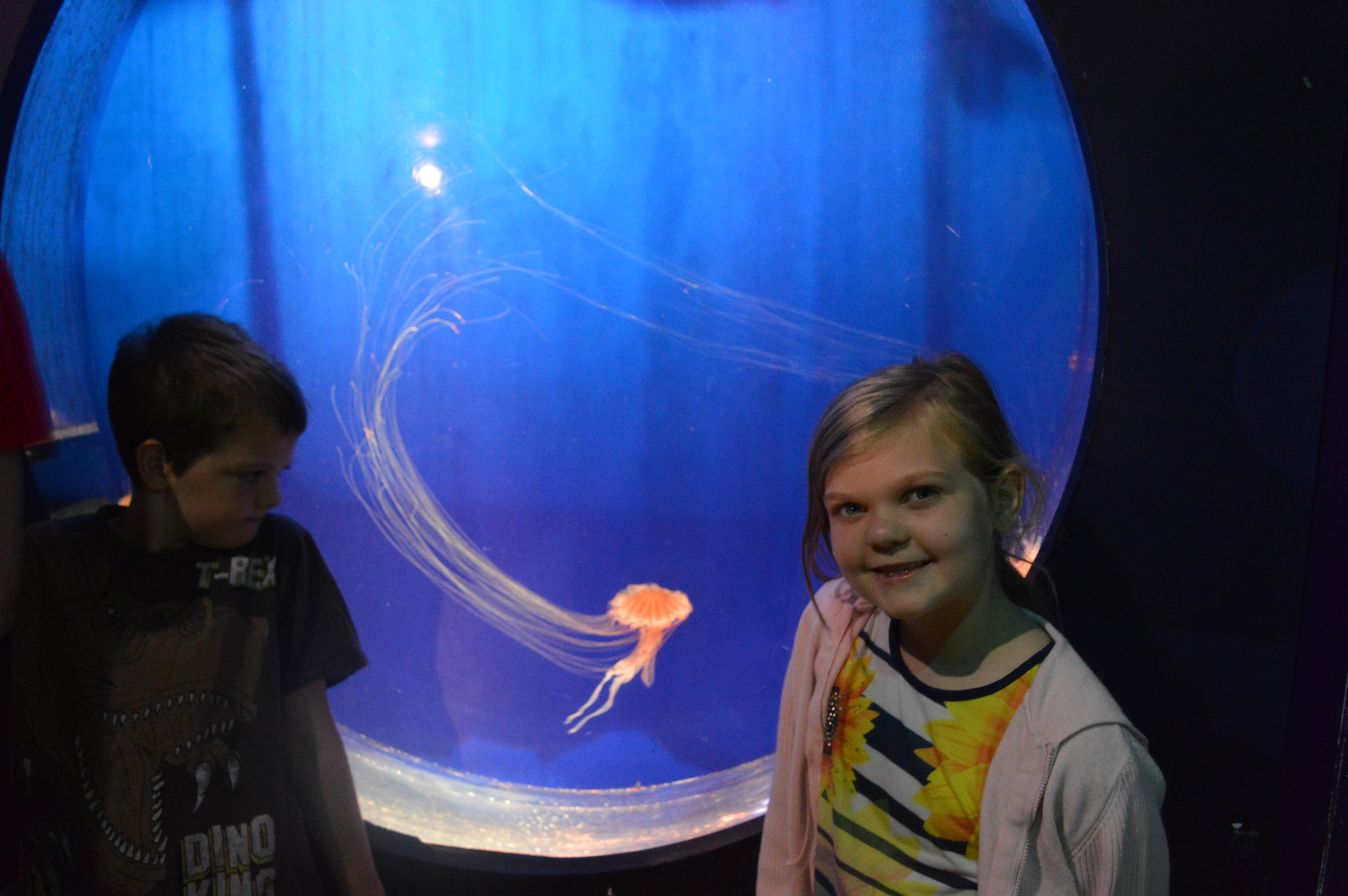 Kaide and Eowyn stood next to the jellyfish tank